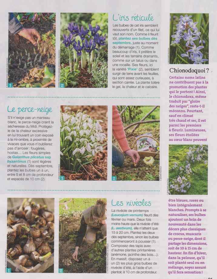 au jardin - Page 29 1d21