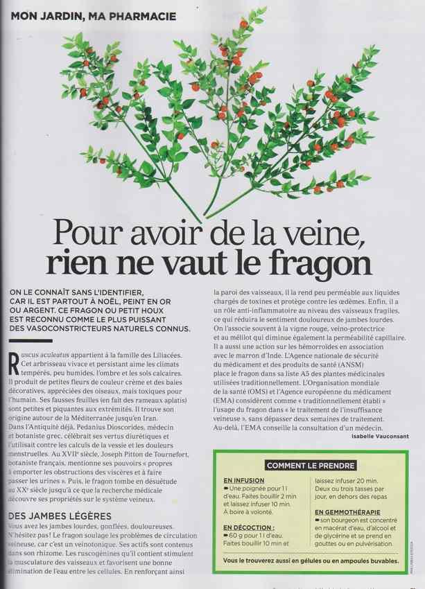 les plantes qui soignent - Page 11 2110