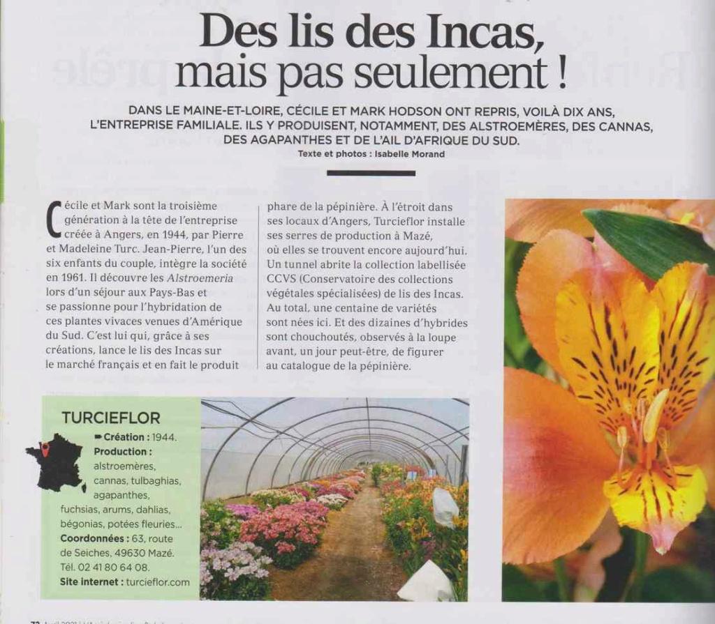 au jardin - Page 24 2213