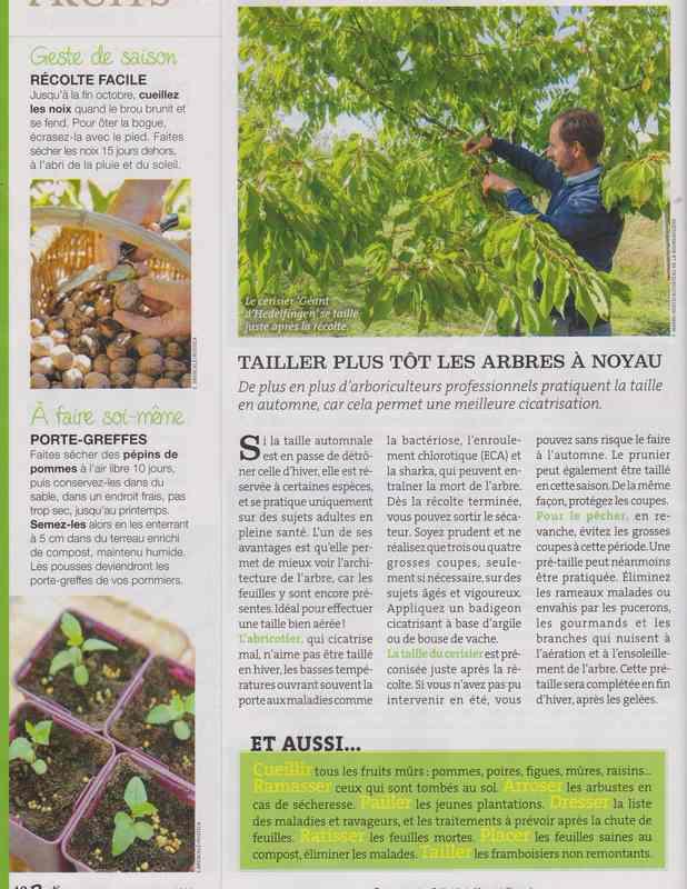 au jardin - Page 42 223