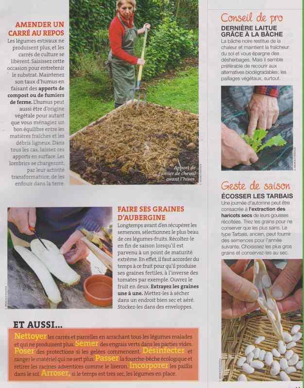 au jardin - Page 2 228