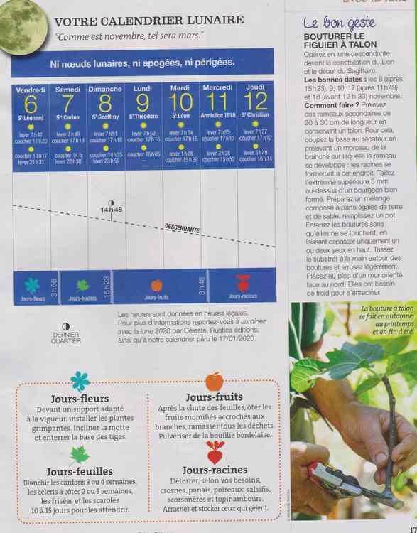 votre calendrier lunaire de la semaine - Page 7 229