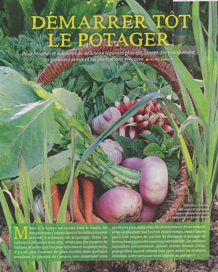 au jardin - Page 9 236