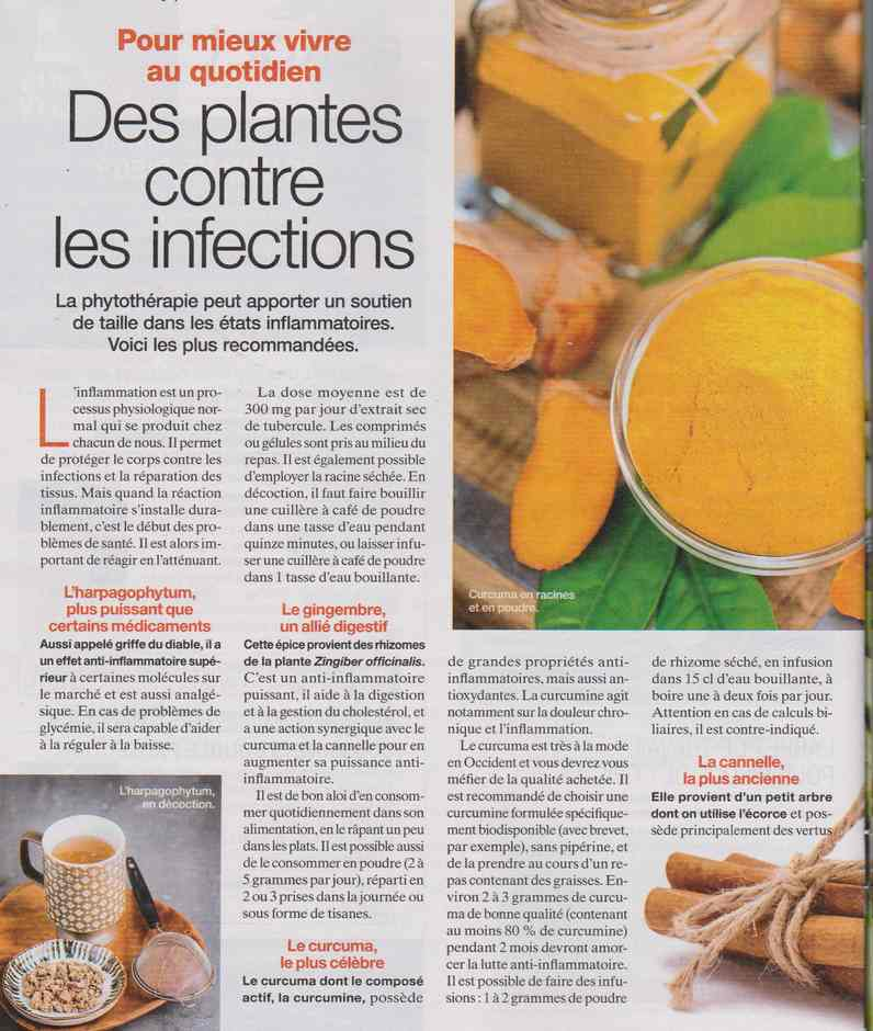 les plantes qui soignent - Page 19 2412