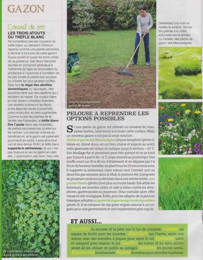 au jardin - Page 40 2812