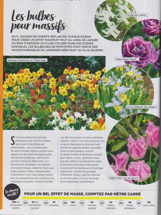 au jardin - Page 40 2a13