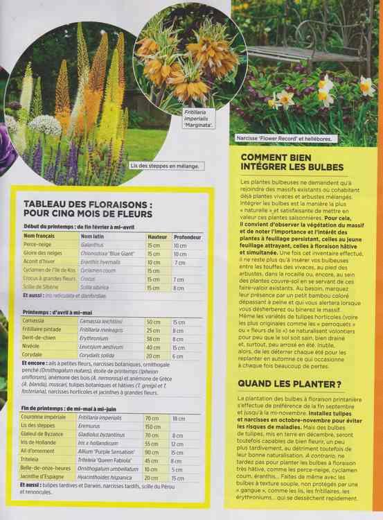 au jardin - Page 40 2b11