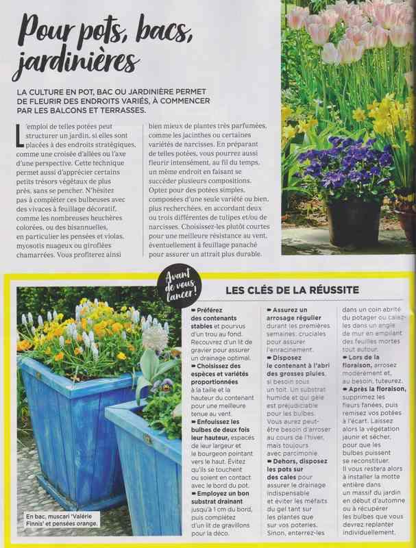 au jardin - Page 40 2c10