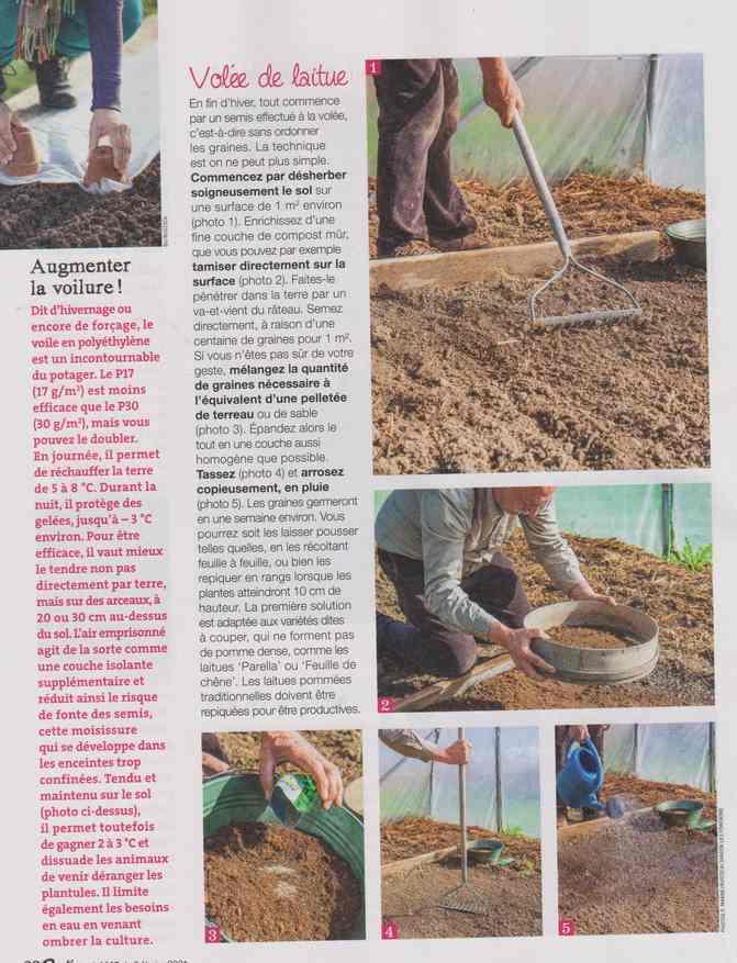 au jardin - Page 9 2c15