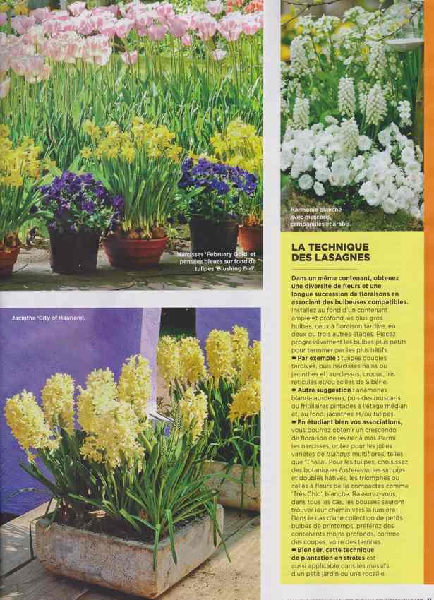 au jardin - Page 40 2d10