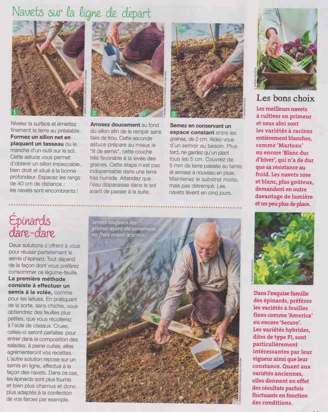 au jardin - Page 9 2d12