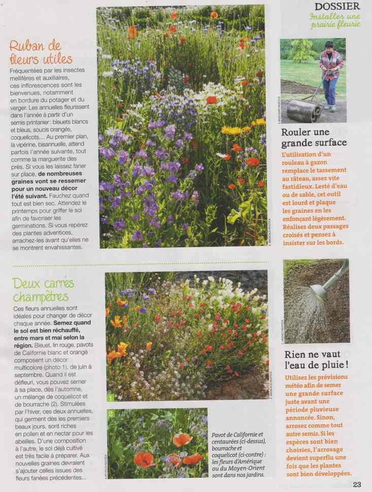 au jardin - Page 12 2d14