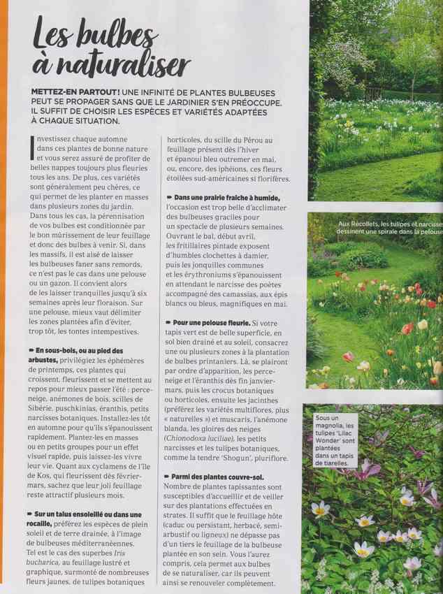 au jardin - Page 40 2e10