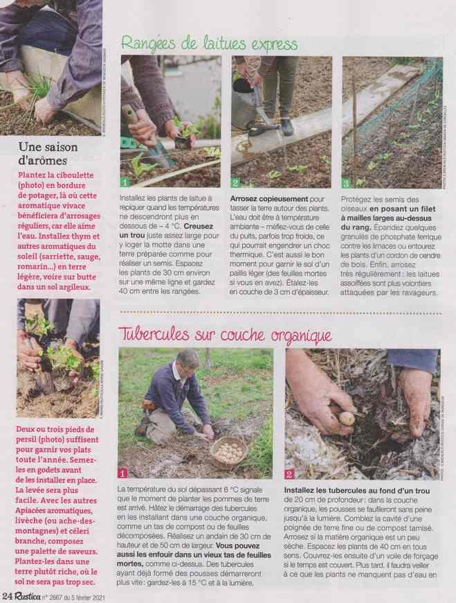 au jardin - Page 9 2e12