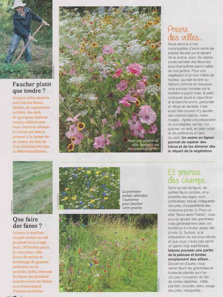 au jardin - Page 12 2e14