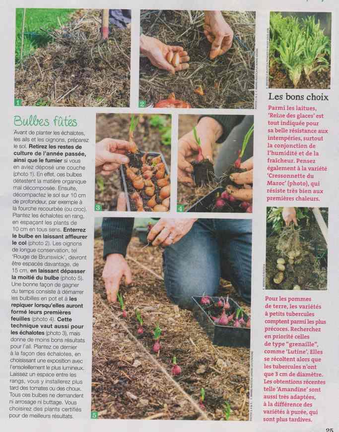 au jardin - Page 9 2f12