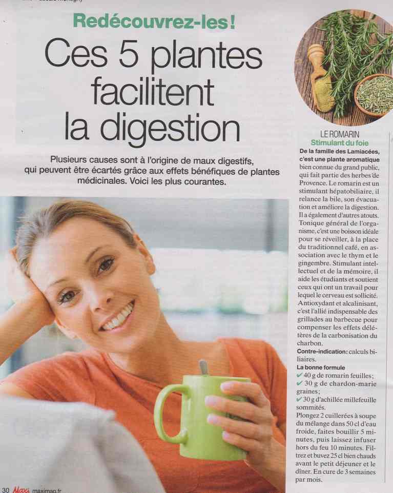 les plantes qui soignent - Page 20 3213