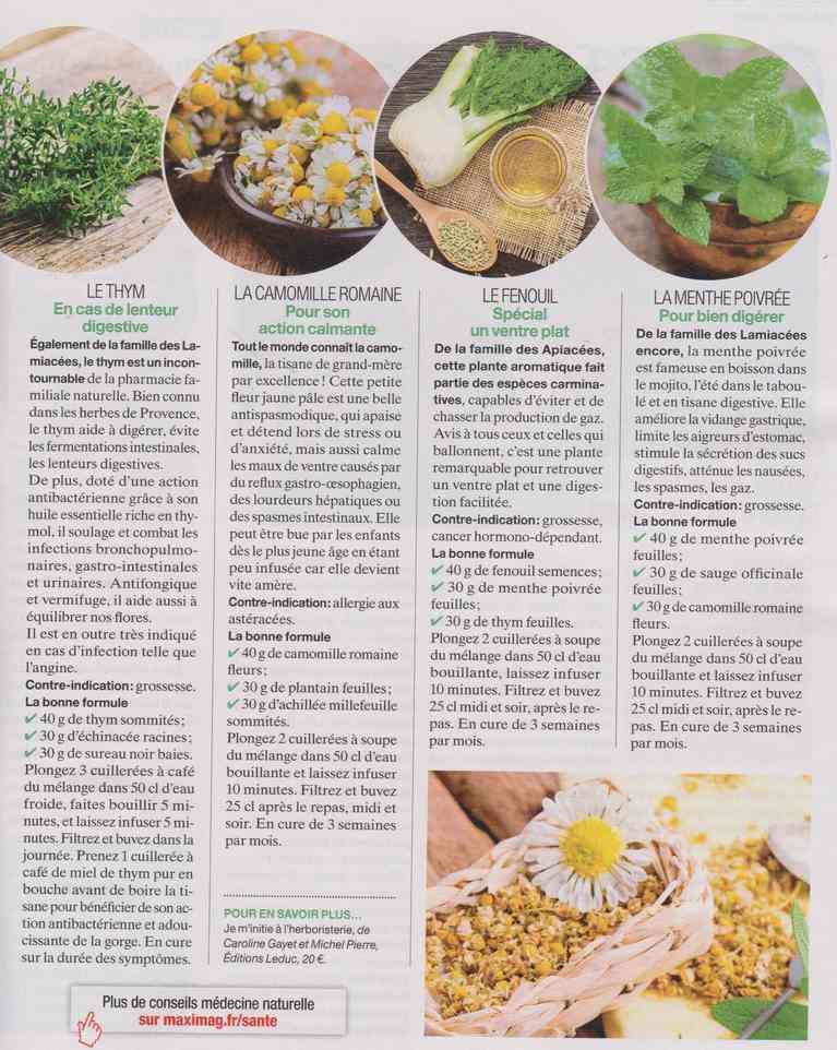les plantes qui soignent - Page 20 32a11