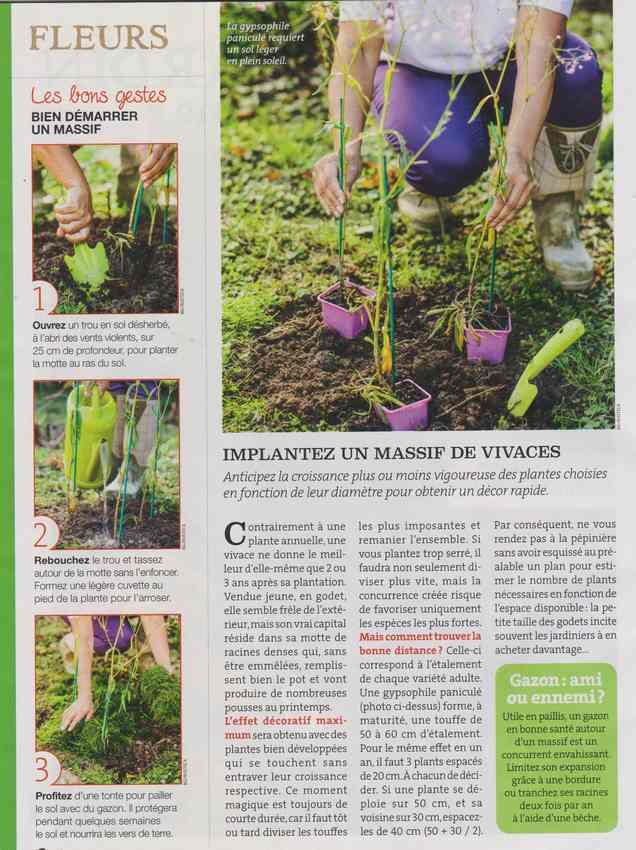 au jardin - Page 5 336