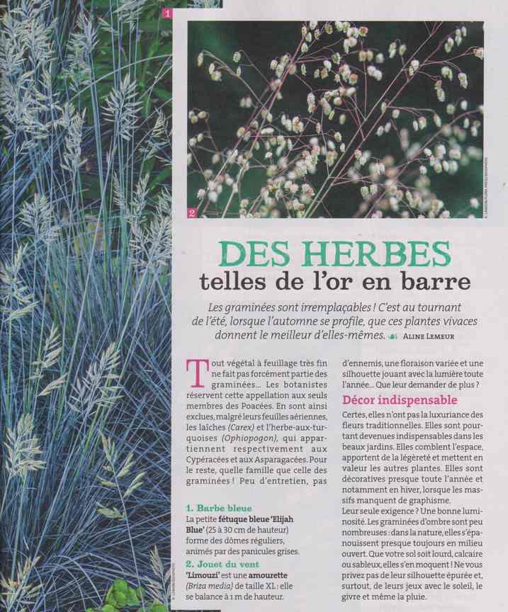 au jardin - Page 26 355