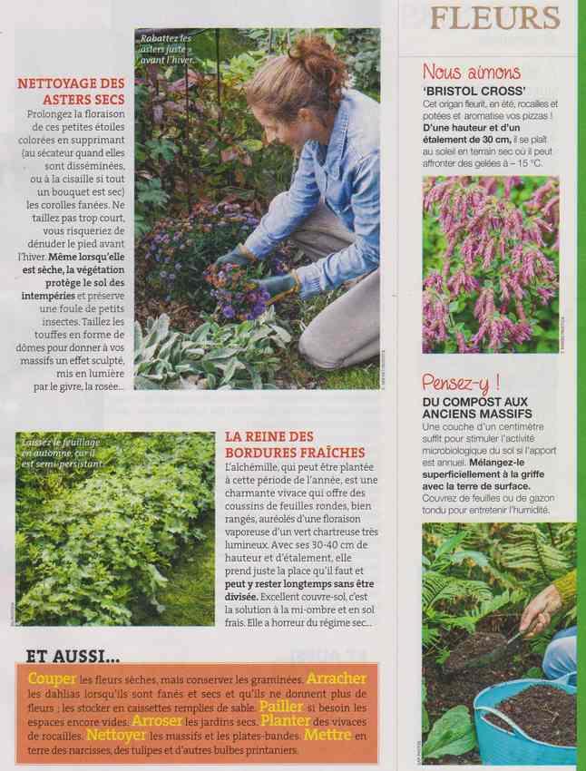 au jardin - Page 5 3a22