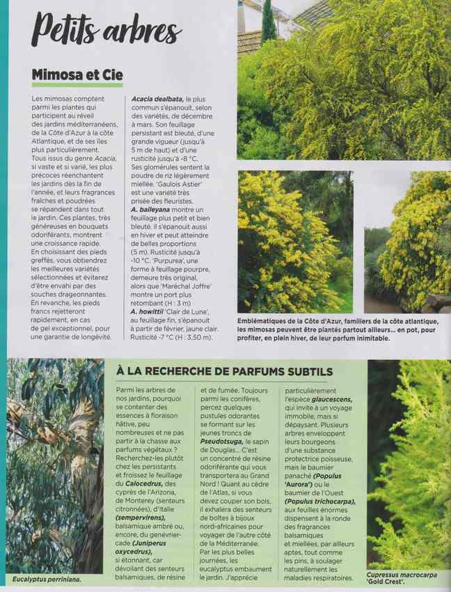 au jardin - Page 7 3a23