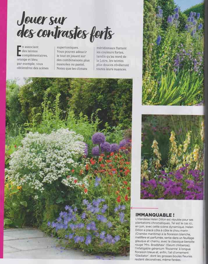 au jardin - Page 9 3a25