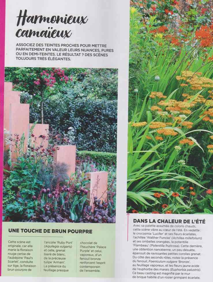 au jardin - Page 9 3c13