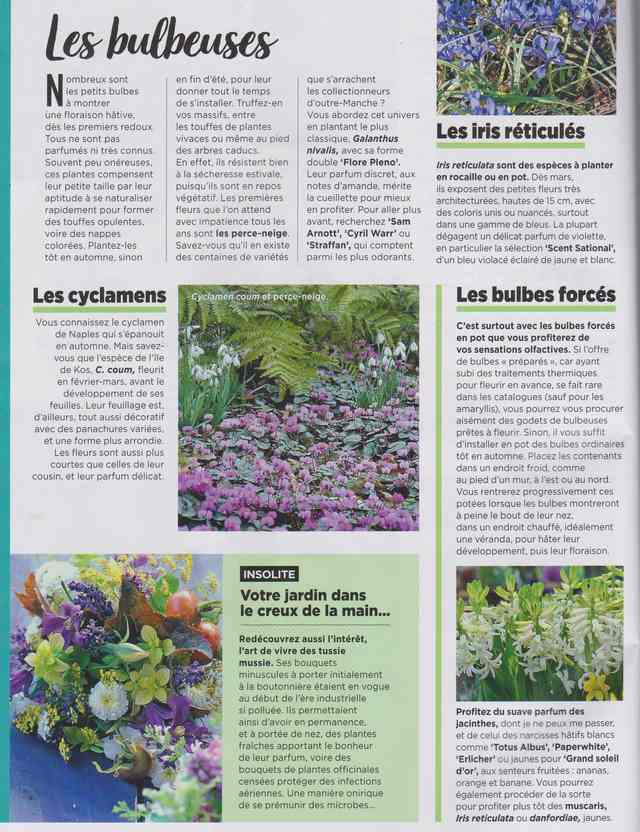 au jardin - Page 7 3i10