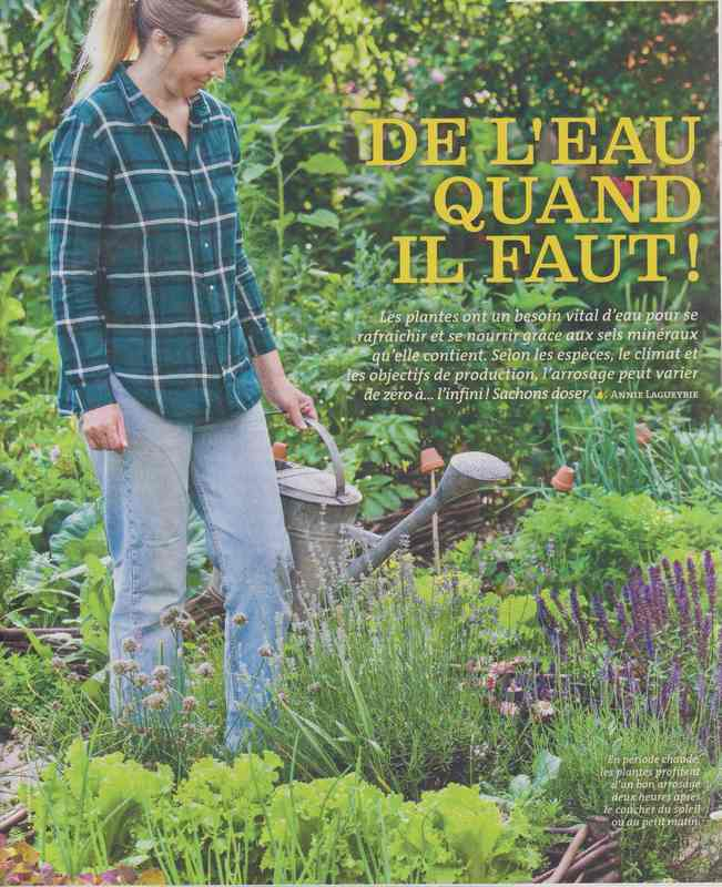 au jardin - Page 36 411