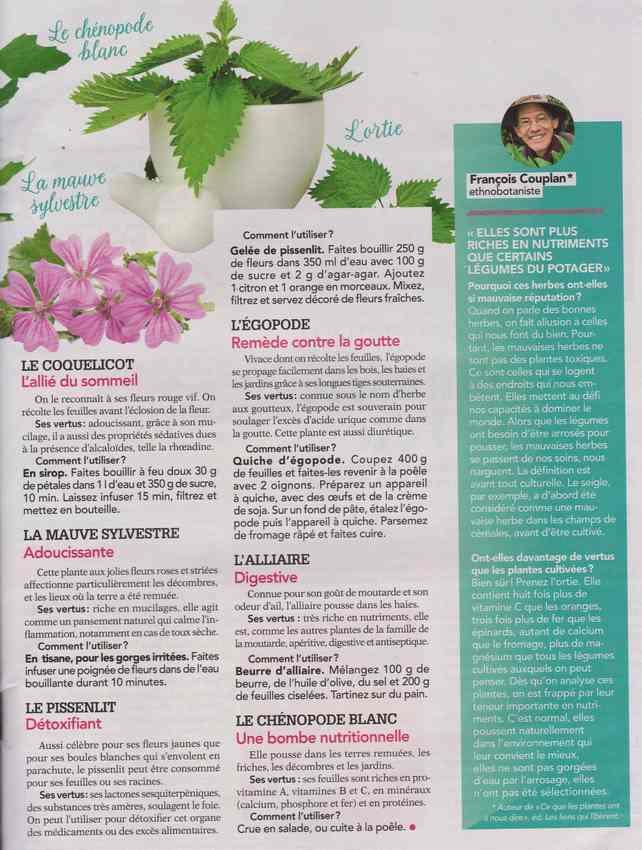 les plantes qui soignent - Page 13 4a12