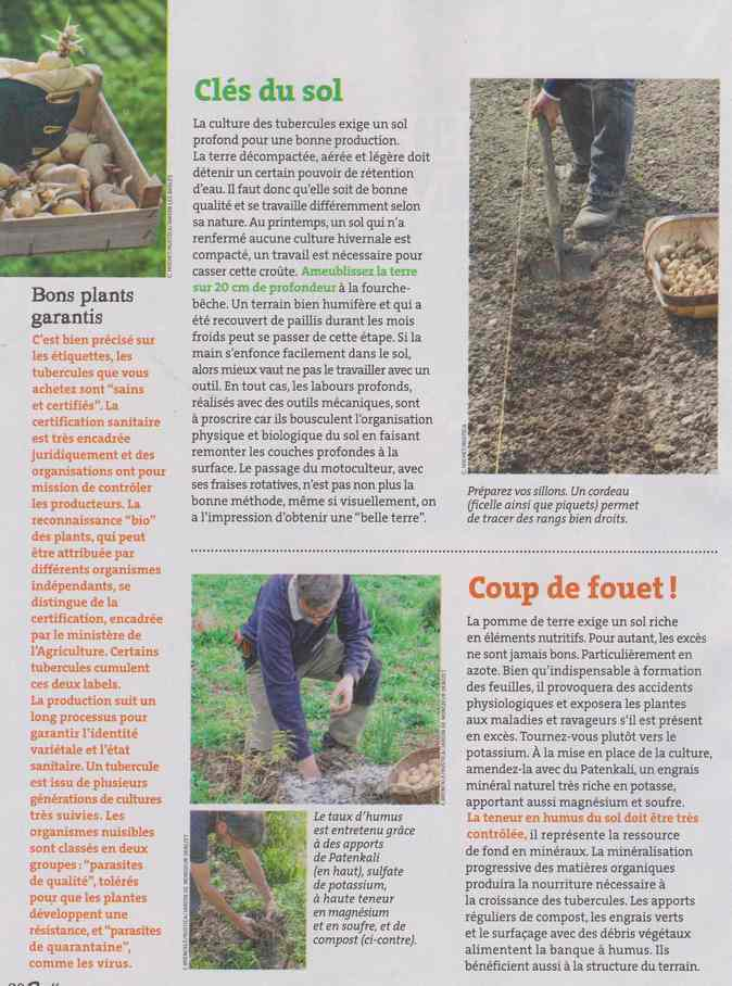 au jardin - Page 12 4a23