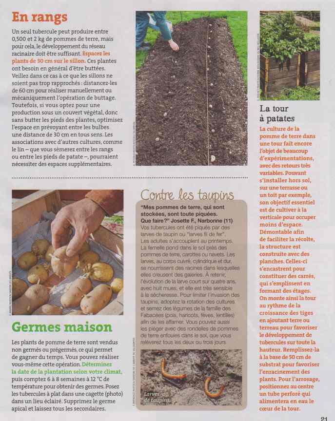 au jardin - Page 12 4b17