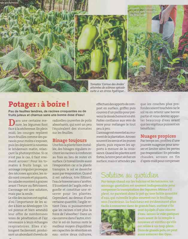 au jardin - Page 36 4c10