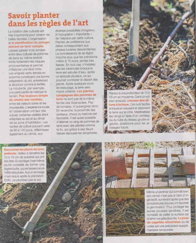 au jardin - Page 12 4c17