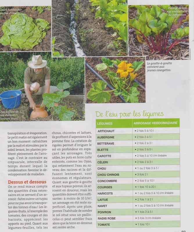 au jardin - Page 36 4d10