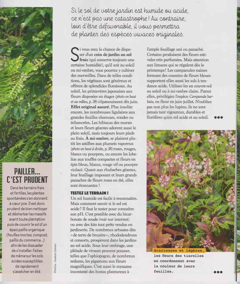 au jardin - Page 17 4d15