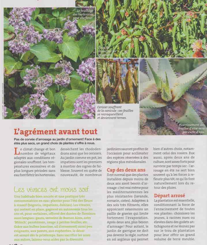 au jardin - Page 36 4e10