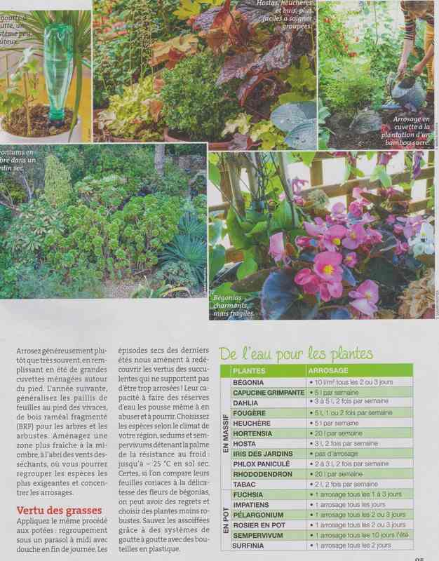au jardin - Page 37 4f10