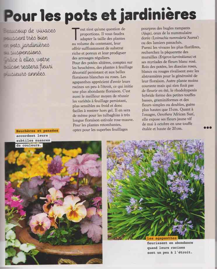 au jardin - Page 17 4f15
