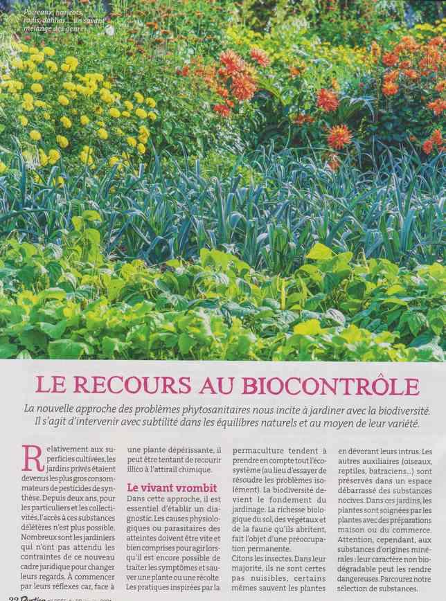 au jardin - Page 8 531