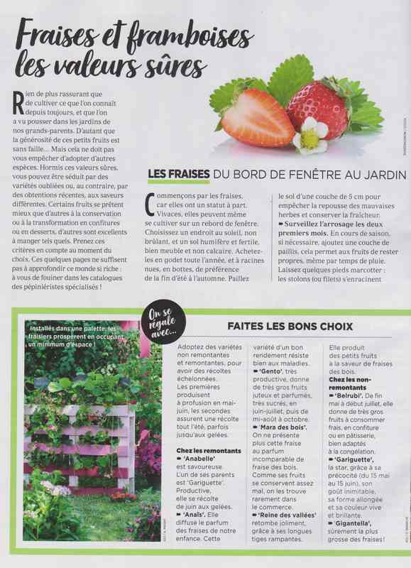 au jardin - Page 42 5a17
