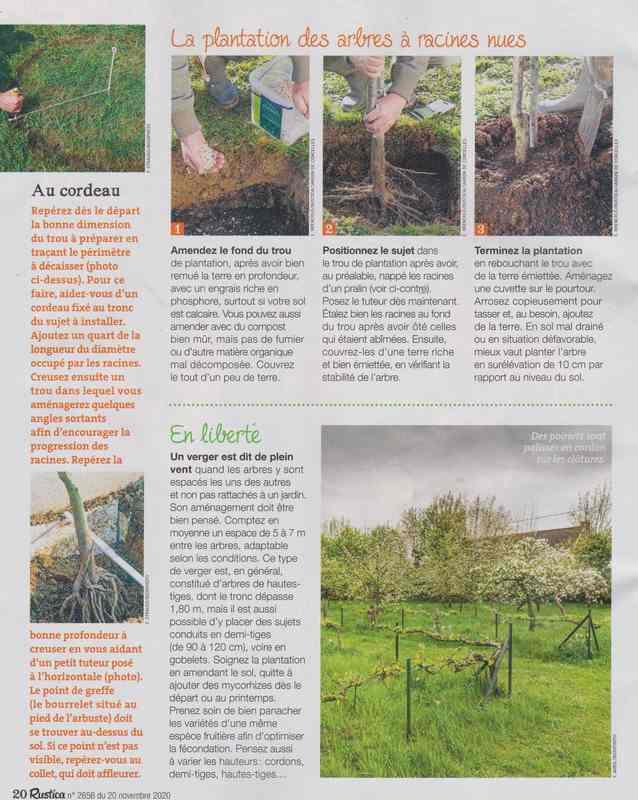 au jardin - Page 5 5a20
