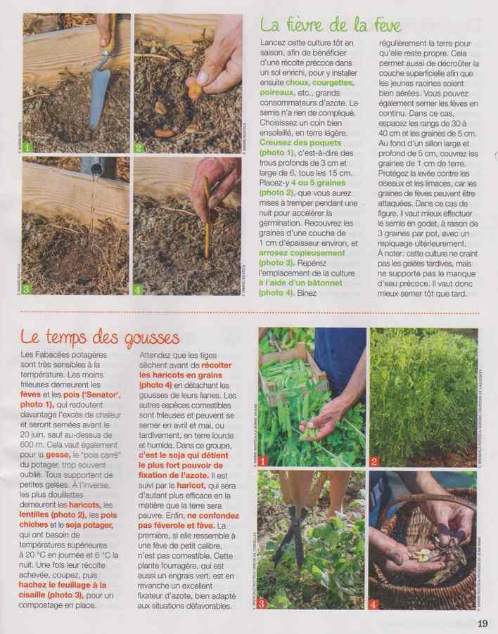 au jardin - Page 18 5b18