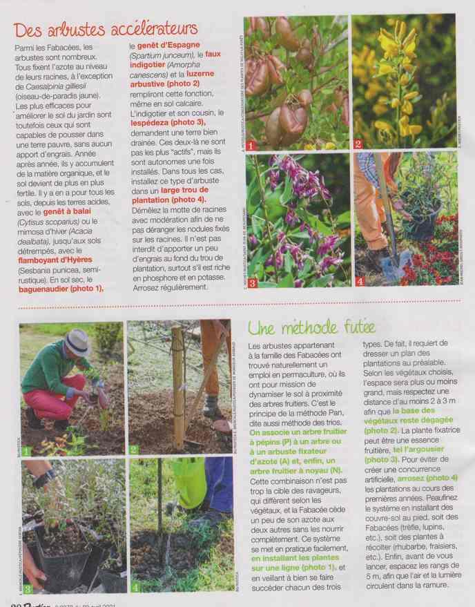 au jardin - Page 18 5c16
