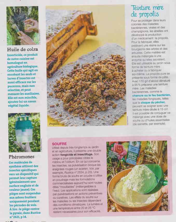 au jardin - Page 8 5d13