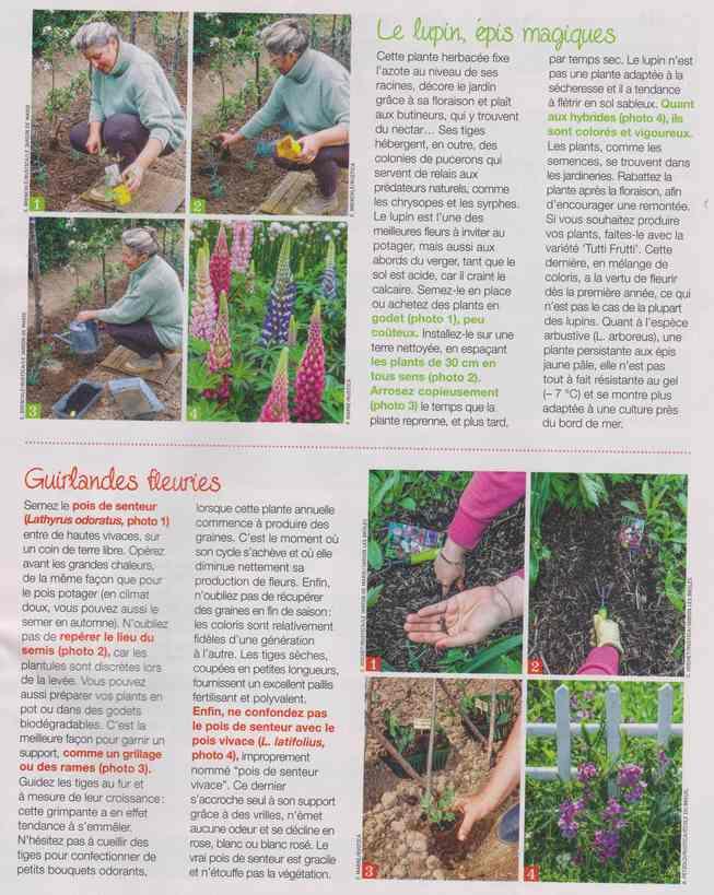 au jardin - Page 18 5f11