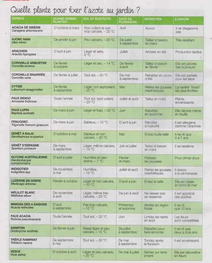 au jardin - Page 18 5h11