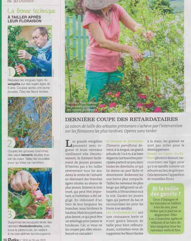au jardin - Page 37 615