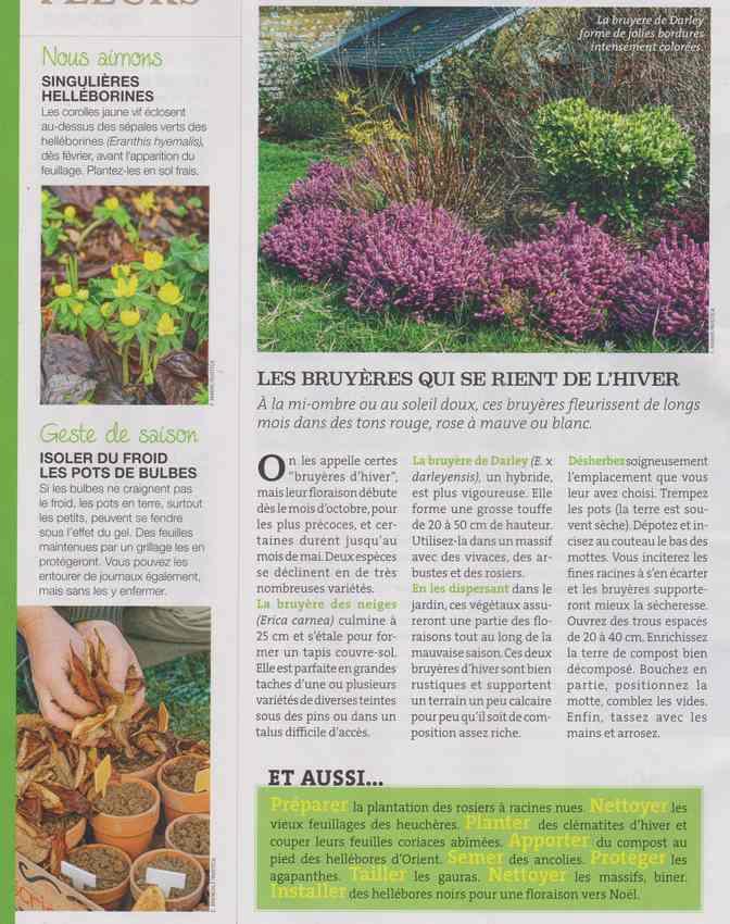au jardin - Page 6 629
